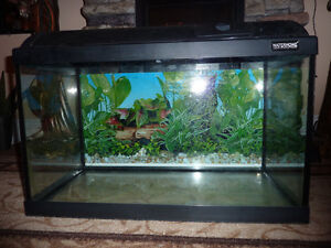 Aquarium Waterhome 20 gallons with canopy and GLO light