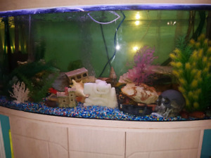 72 gallon bow fish tanks for sale