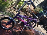 Purple Raleigh Chopper