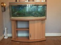 4FT RENA BOW FRONTED FISHTANK WITH CABINET