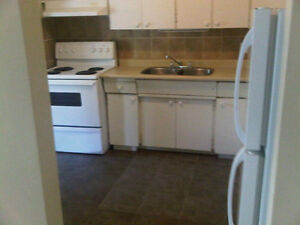 Clean Quiet 2 Bedrm  Apt. $990 All Inclusive Dec. Kitchener / Waterloo Kitchener Area image 3