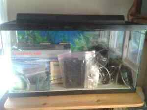 Aquarium with all equipment for fish or amphibians