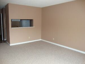 NICE WEST EDMONTON BACHELOR APARTMENT AVAILABLE!!