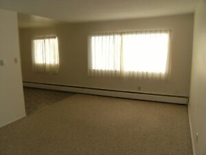 Bachelor Suite for rent $600.00