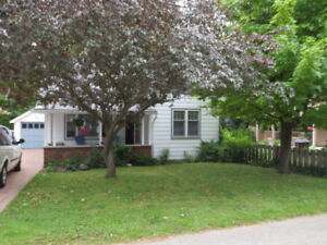 Lovely Cottage Grand Bend close to beach