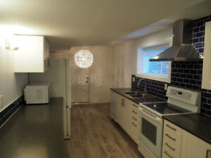 New 2 Bedroom 1000sq ft basement suite in Brookswood (Langley)