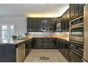 Cabinet Paint Spray Refinishing