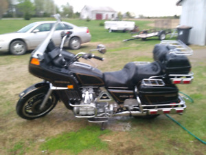 Gold wing 81