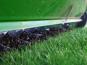 Premium Fall Lawn Care Service | Shark Lawn Specialists Stratford Kitchener Area image 5
