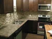 Furnished legal 2 bedroom basement suite in Timberlea