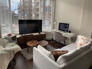 Beautifully Renovated Bachelor - DOWNTOWN