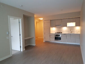 Brand New 1bdr and 1den Condo in Bosa Uptown 1 - $1800 (932sqft)
