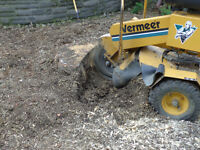 Tree Stump Grinding Services available