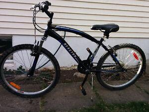 24 inch bike, fairly new