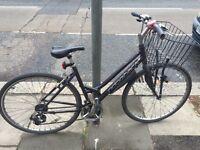 Ladies Ridgeback Bike
