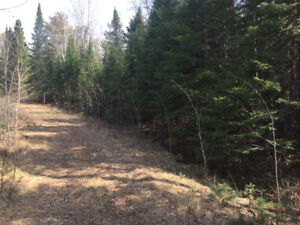 Sioux Narrows non-waterfront lots close to Lake of the Woods