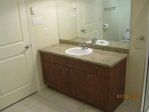 Vanite/comptoir granite de salle de bain