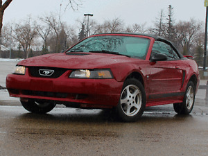 2002 Ford Mustang Convertible: go TOPLESS this summer.