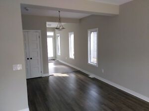 Gorgeous Brand New Home in the Falls!