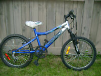 Mountain bicycle for boys