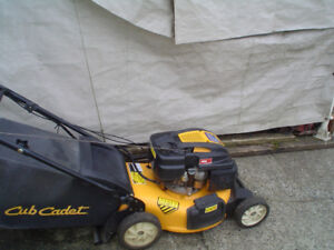 Lawnmowers for sale gas and electric