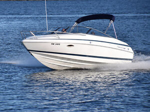 1999 Chris-Craft 210 Cuddy