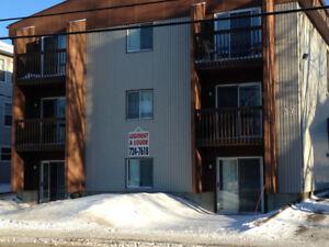 Appartement 2 1/2 près du CEGEP et UQAR