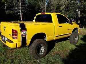 2005 Dodge Rumblebee