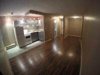 Bachelor Apartment 17th ave s.w Great Deal