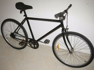RALEIGH Speed Fixie fixed speed bike bicycle