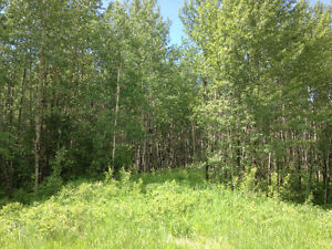 3.73 Acres available in Parkland County - $100,000