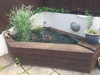 Pond set up + fish + 2 filters + pond