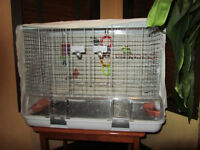 Salmon ArmBudgies (2) with Large Vision Cage