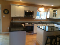Kitchen cabinet reno salesmen(women)