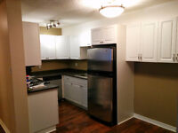 2 Bedroom Condo in Meadowgreen - Recently Renovated