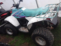 pieces de polaris trail boss 250