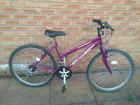Ladies Townsend Atlantis Hybrid Bicycle