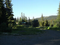 0.21 Acre Logan Lake Lot