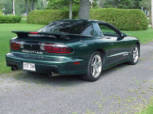 1994 Pontiac Trans Am t top