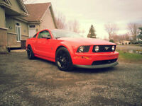 2005 Ford Mustang GT / Shaker 1000 / Mag GT500