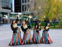 DESI BEATS BOLLYWOOD FUSION DANCE ACADEMY