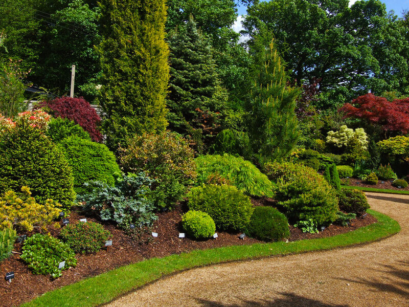 Top Tips for Perfect Lawn Edges