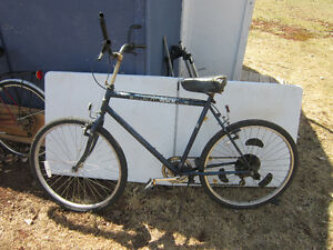 Autobike 6 Speed Automatic Shifting Bicycle