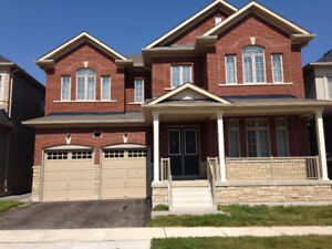 Brand-new luxury 4 Bd 3.5 Bth house in Oakville