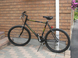 "18 speed 26"" Raleigh Discovery mountain bike"