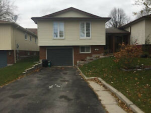 **  Whitby Pringle creek neighbor 1 + den for rent