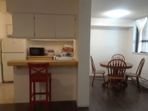 DOWNTOWN TORONTO FURNISHED ONE BEDROOM CONDO