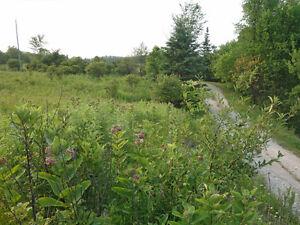 3 minutes from Wakefield Village! Gatineau Ottawa / Gatineau Area image 4