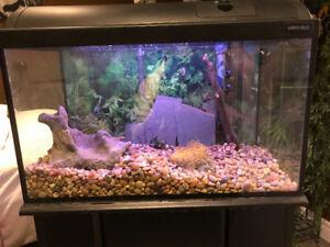 15G Aquarium