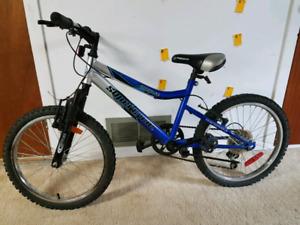 Vélo enfant roues 20 pouces